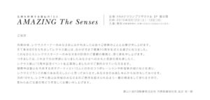 AMAZING The Senses2